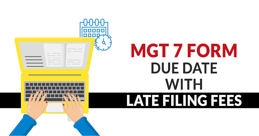MGT-7 Annual Return Form MCA